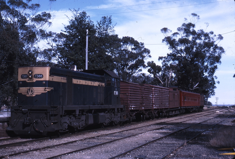 112160: Everton Down Beechworth Goods with AREA Car T 388