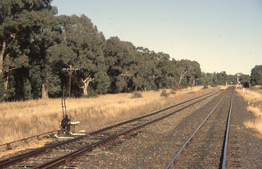 131074: Elong Elong looking towards Dubbo